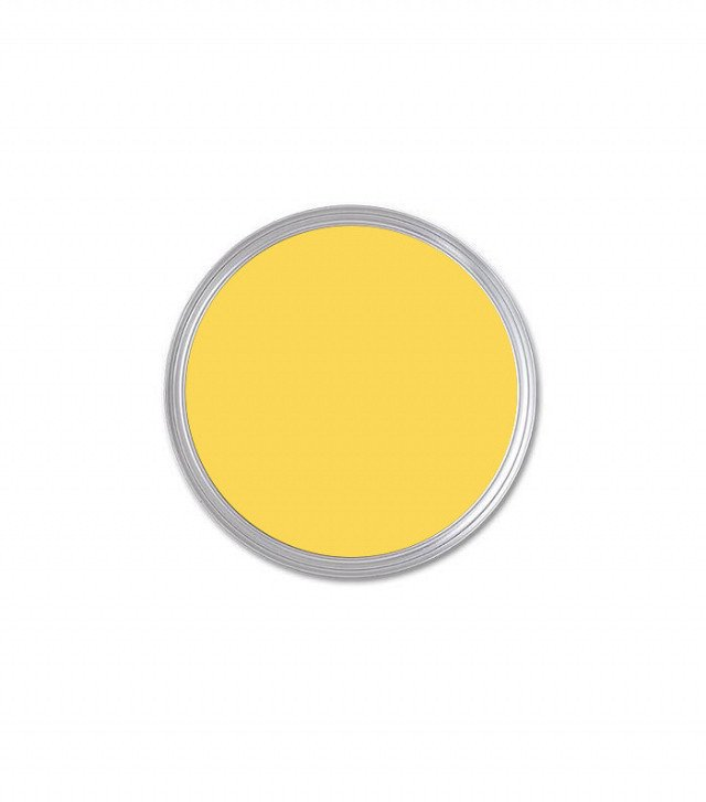 Farrow & Ball Citron ($36)  Photo 21 of 23 in What's the Best Color to Paint Your Front Door? Your Guide to Finding The One