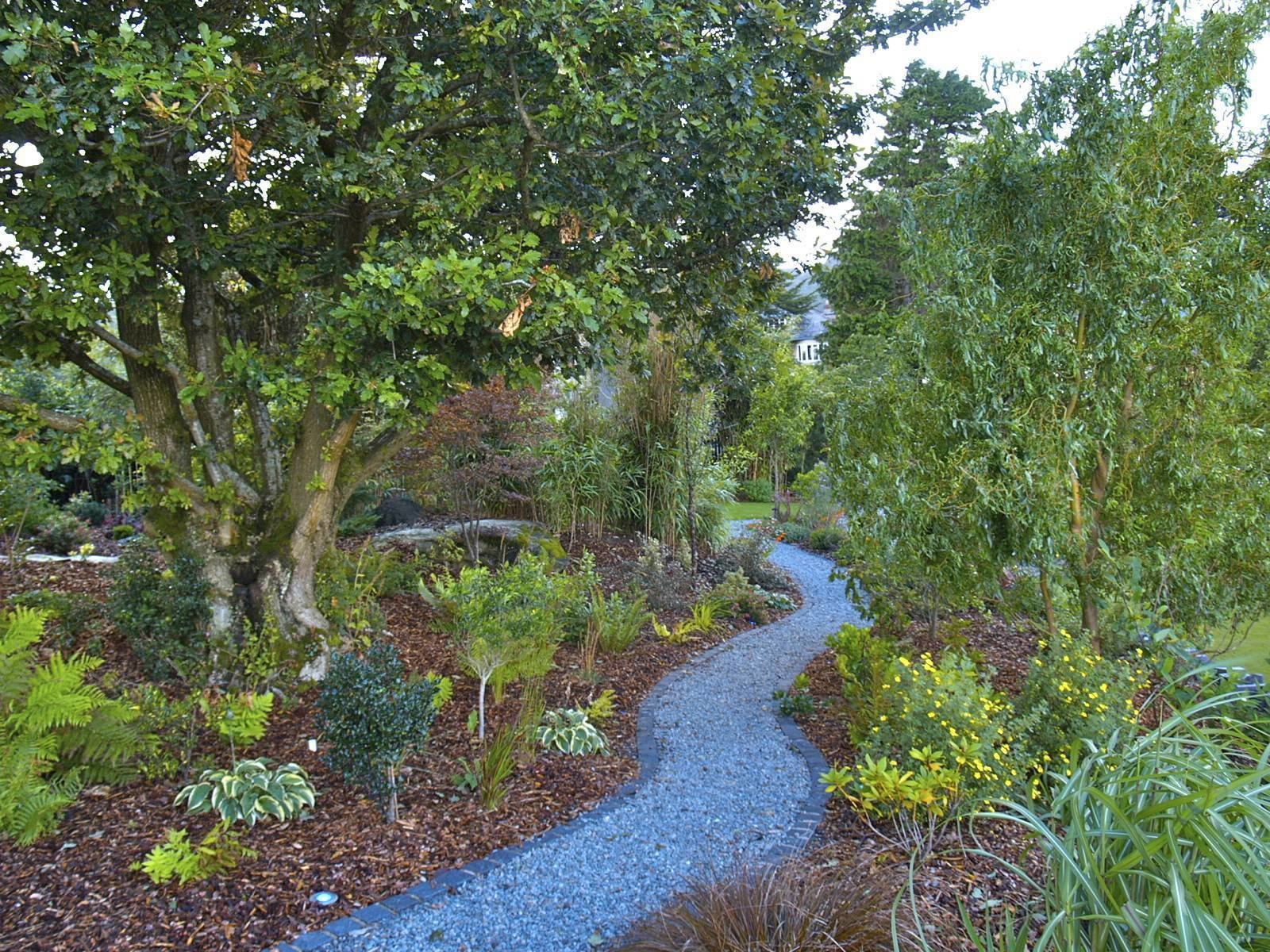 An existing Welsh oak was retained and pruned.  The rocky area was redefined with shade-loving perennials, Japanese maples and a winding, granite sett-edged granite path.  Clifftop garden North Wales