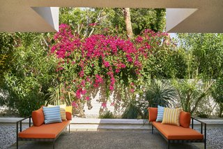 Lush, tropical landscapes designed by Judy Kameon blanket the exterior of the hotel.