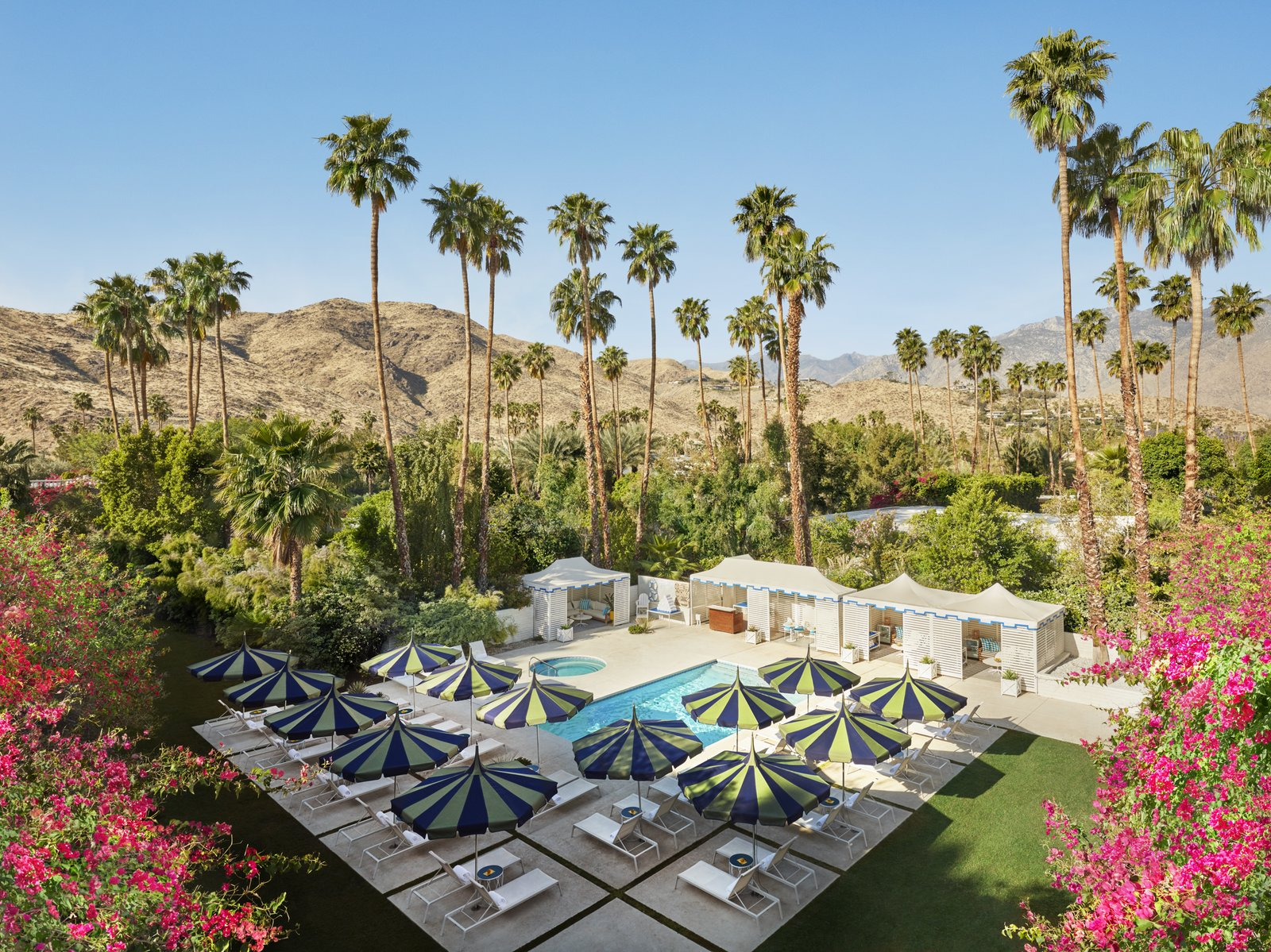 """Outdoor, Large Patio, Porch, Deck, Trees, Concrete Patio, Porch, Deck, Gardens, Walkways, Large Pools, Tubs, Shower, Pavers Patio, Porch, Deck, Flowers, Back Yard, and Desert """"Palm Springs is singular, and I wanted to create a hotel that captures its essence—groovy modern architecture meets Hollywood glamour—and crank it up a notch,"""" Jonathan Adler said of his design at the Parker Palm Springs.   Parker Palm Springs from Jonathan Adler Reveals His Redesign of the Parker Palm Springs"""
