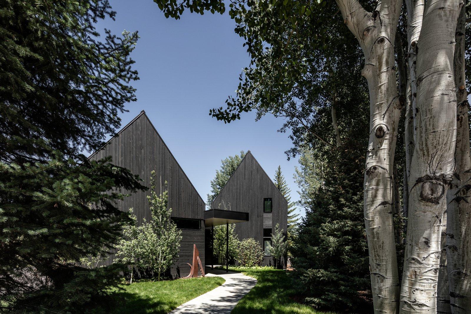 V-Plan Residence black facade