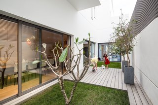 Private garden with deck