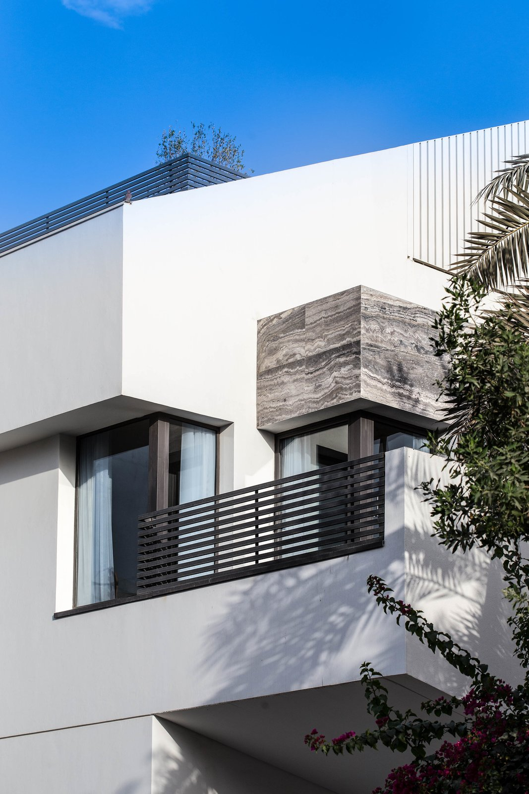 Windows, Single Hung Window Type, Sliding Window Type, and Metal Exterior Materiality  A House in Yarmouk by Studio Toggle