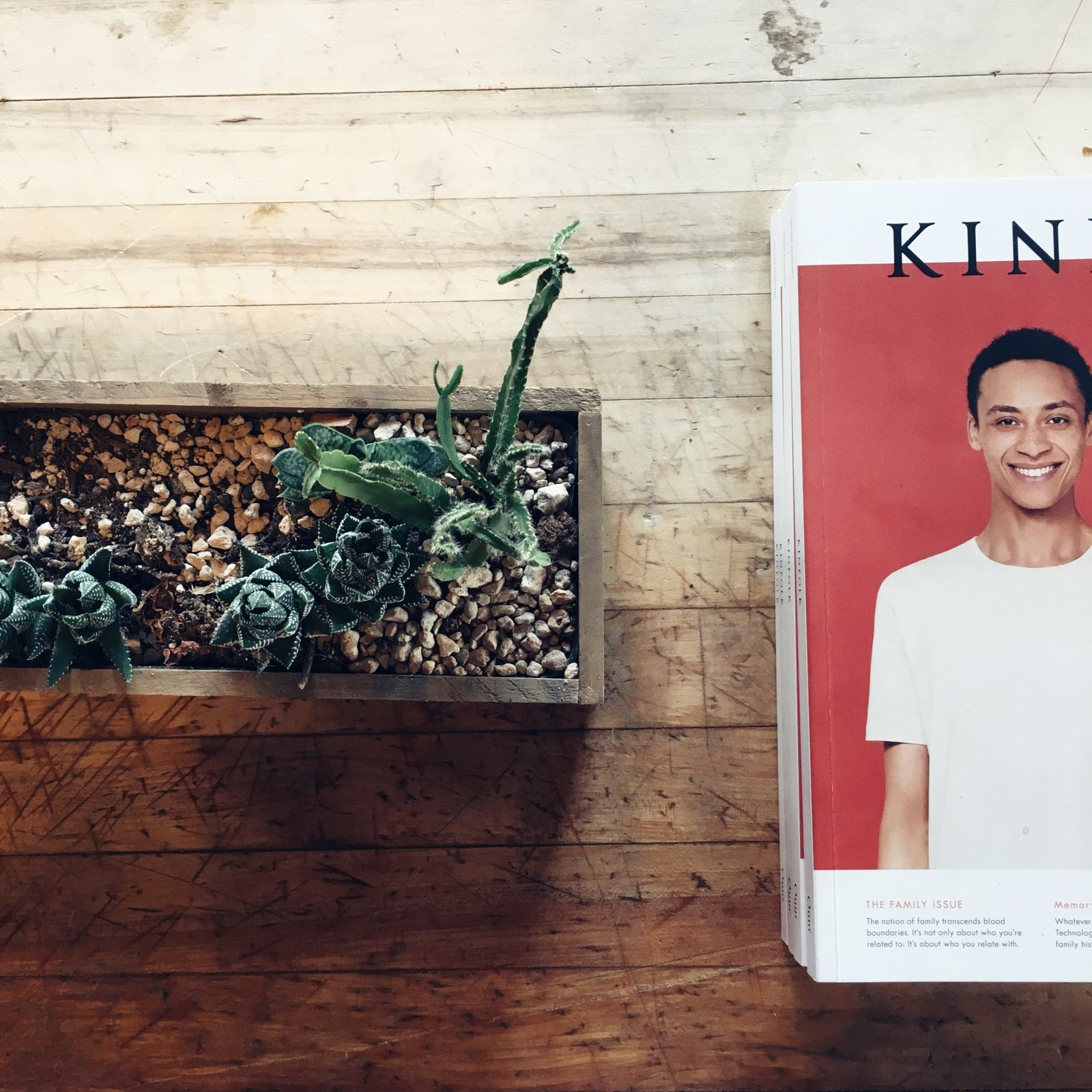 An issue of Kinfolk and some succulents sit atop a reclaimed wood table.  Schoolhouse Electric by Jonathan Simcoe