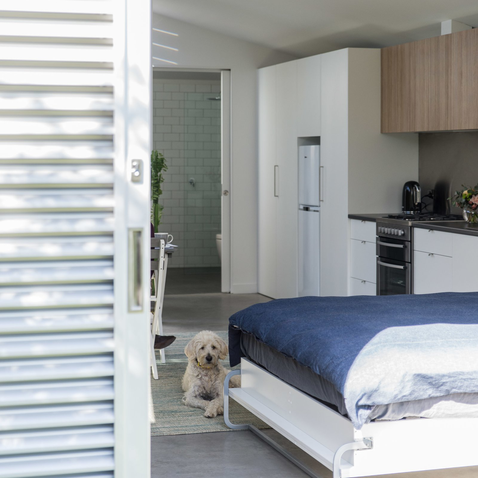 Living space  Cooks Hill Granny by Shane Blue