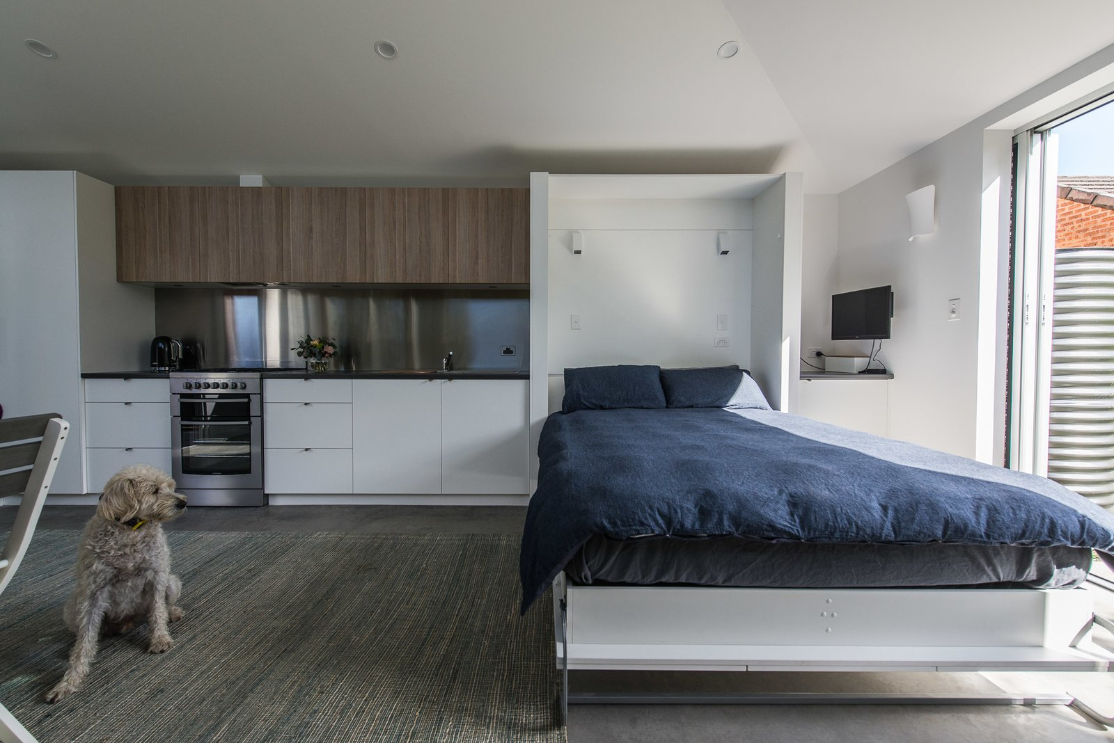 Fold down bed  Cooks Hill Granny by Shane Blue