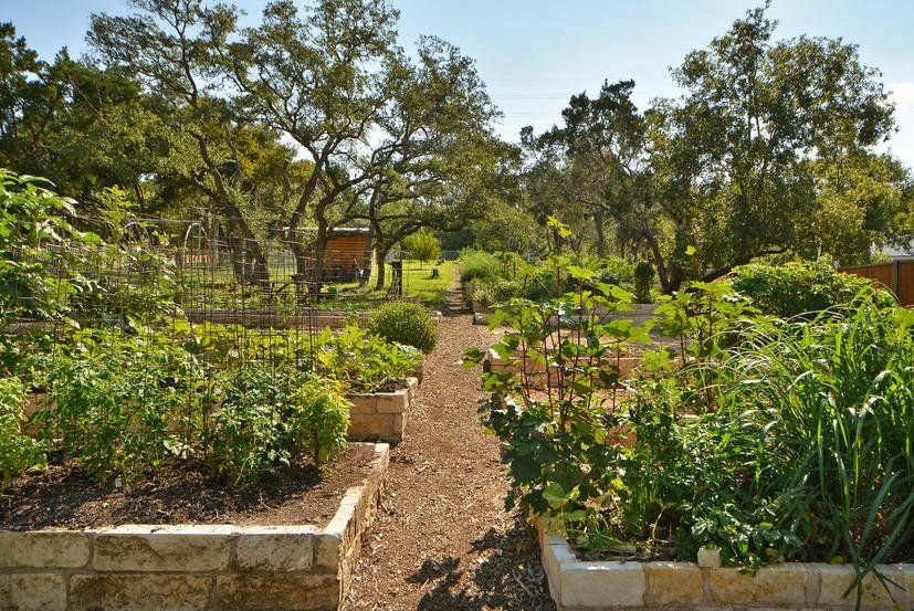 Community Garden in the Denizen community in Austin, Texas.  Millennial Housing Trends