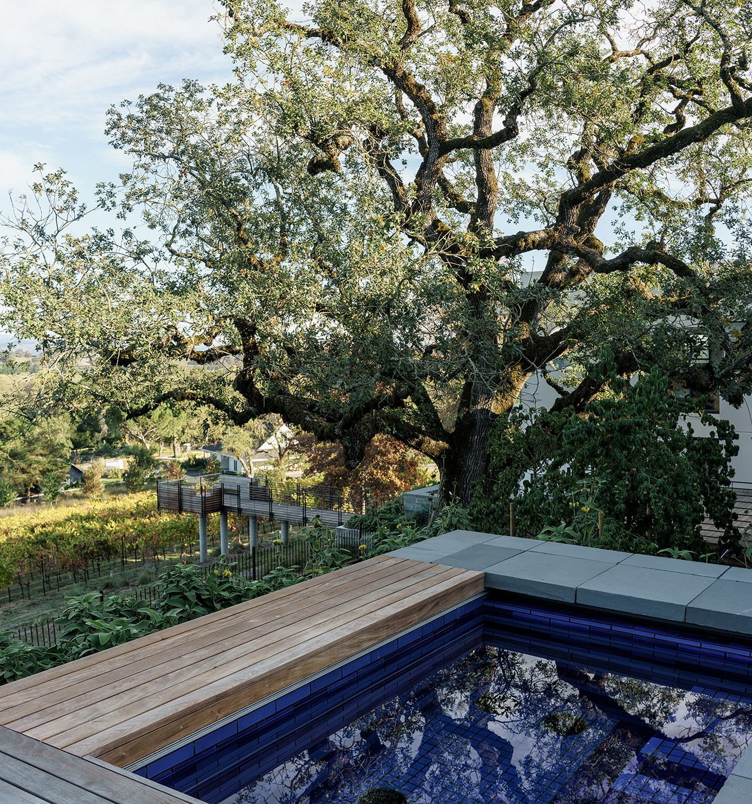Outdoor, Decking Patio, Porch, Deck, Trees, Small Pools, Tubs, Shower, Stone Patio, Porch, Deck, and Shrubs Master bedroom courtyard spa sited above the vineyard  Hilltop Haven by Randy Thueme Design