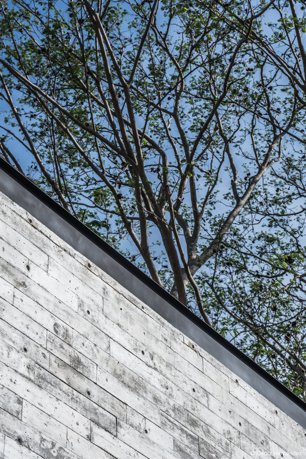 Pure concrete &  steel  Casa Kalyvas by Taller de Arquitectura