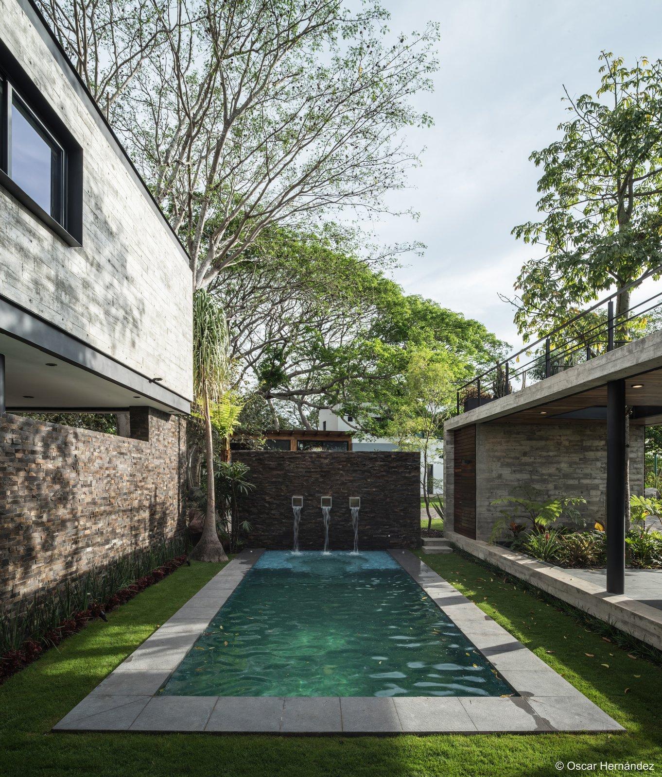 The pool  Casa Kalyvas by Taller de Arquitectura