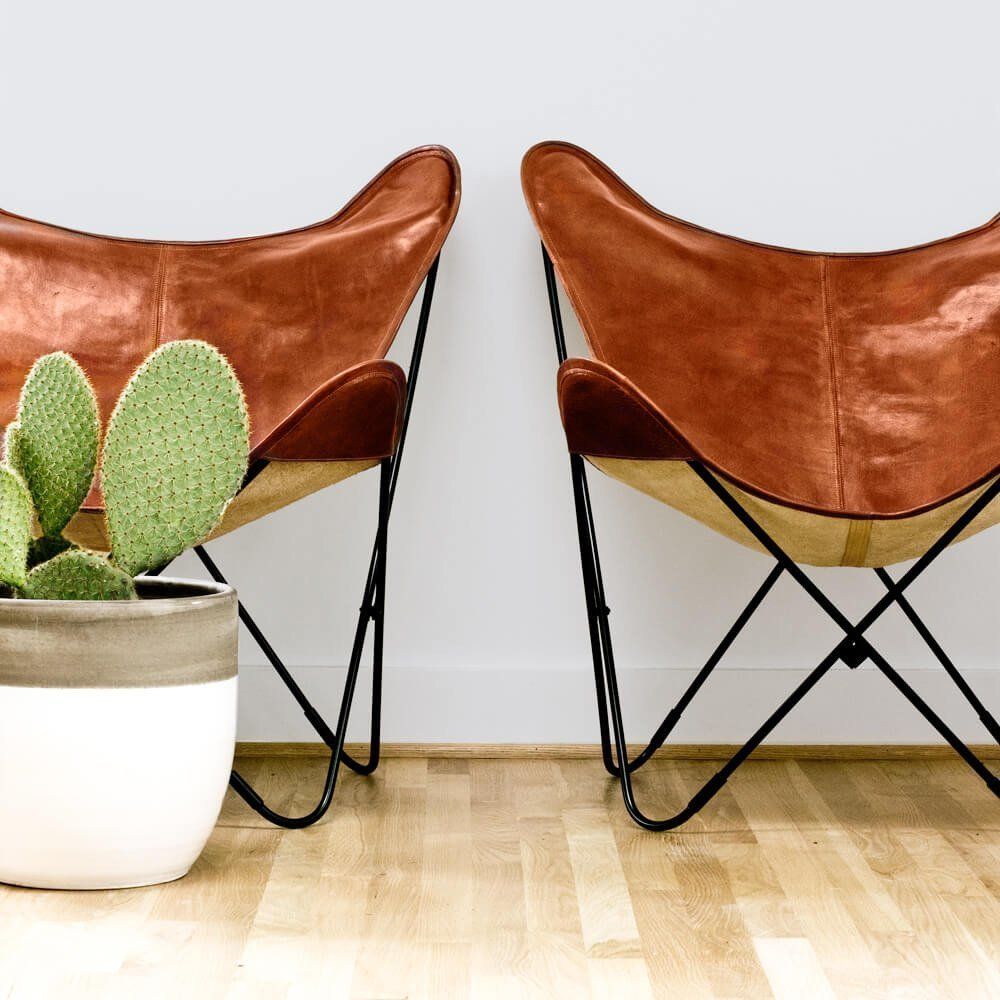 Simple leather butterfly chairs paired with a cactus.    Photo 2 of 7 in 7 Key Tips For Owning Cacti, According to a Cactus Expert from 8 Essential Elements of California Style