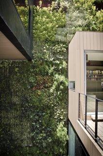 Vertical Garden at the Patio