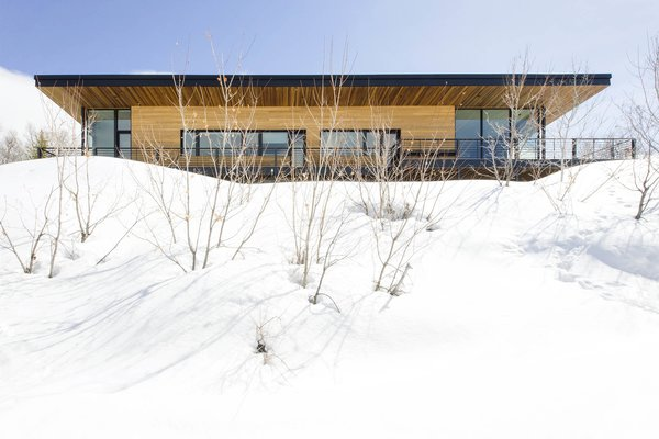 Snow buries scrub oak trees in front of the home's west elevation.