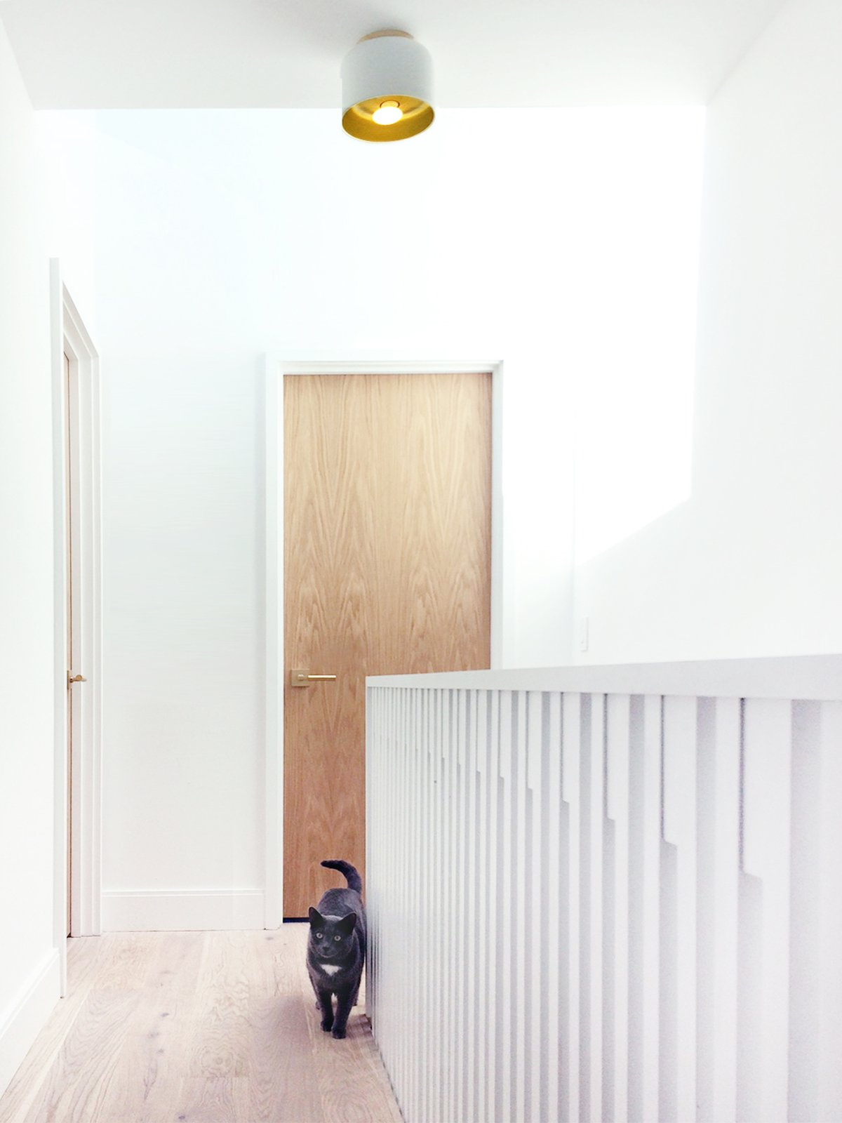 Hallway and Light Hardwood Floor Stair hall  Ritchie Rowhouse by CAB Architects