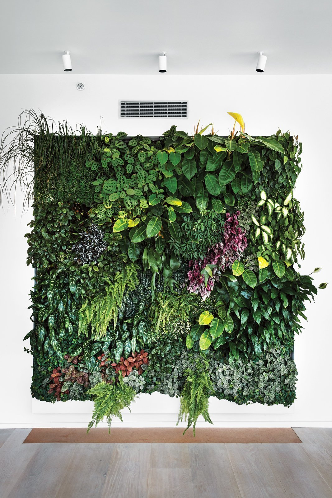 The well-considered botanical composition in a high-end apartment in New York looks as striking as it's owners' many art pieces that adorn the walls.  Photo 5 of 10 in 10 Ways to Create an Uplifting Vertical Garden