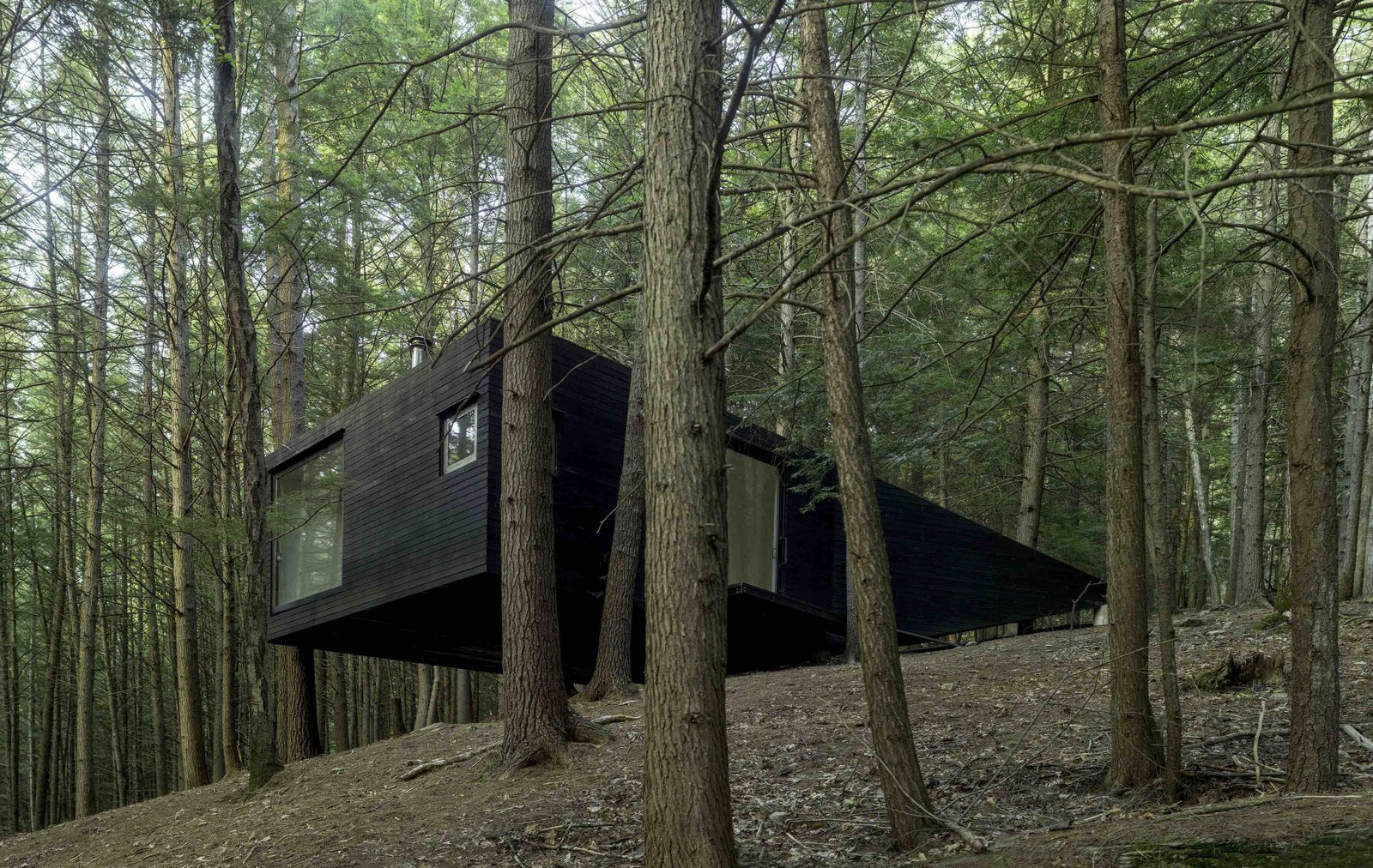 Exterior, Cabin Building Type, Wood Siding Material, and Flat RoofLine In a remote second-growth forest in Sullivan County, New York, is an off-the-grid tree house that was constructed with the help of the trees around it.    Sited on a steep, sloping hill surrounded by trees, the 360-square-foot project was designed to accommodate a limited $20,000 construction budget—and to be approachable enough that amateur weekend builders could construct it.   Architects Mike Jacobs, Biayna Bogosian, Forrest Jessee, Leopold Lambert, and Luis Gutierrez of award-winning New York practice Jacobschang Architecture designed a tree house structure that overcame the challenge of the site's steep topography.  Photos from A Dramatic Tree House by Budget-Conscious DIY Builders