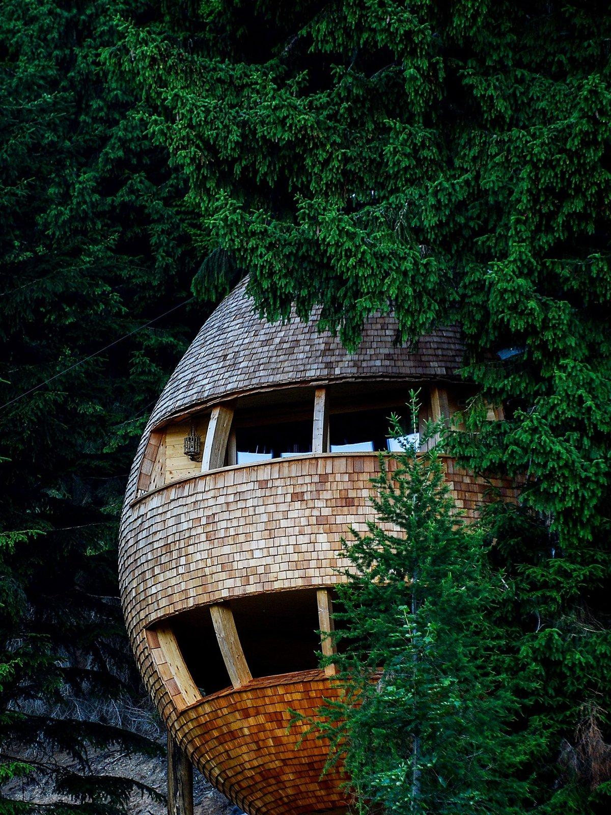Pigna tree house exterior