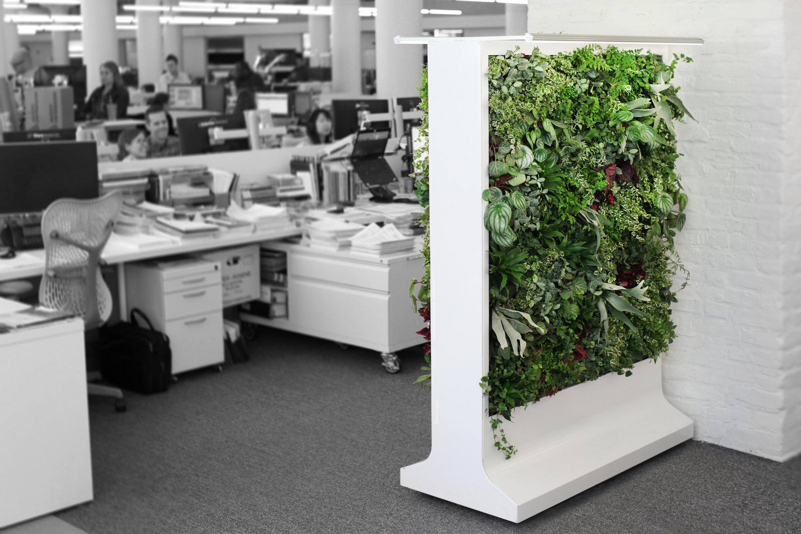 Green panel wall from Sagegreenlife's Verdanta collection.  Photo 3 of 6 in How to Beat the Winter Blues at Work
