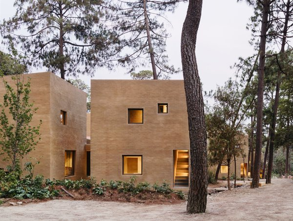 Five Cubist Hideaways Peek Out From a Mexican Pine Forest