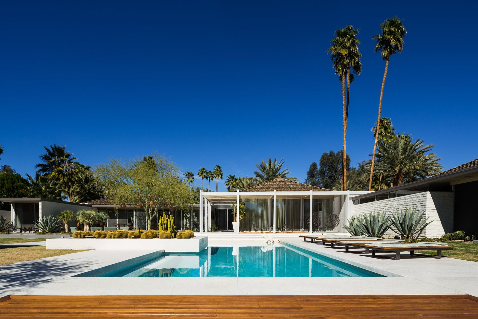Outdoor, Trees, Back Yard, Gardens, Swimming Pools, Tubs, Shower, Hardscapes, Walkways, Concrete Patio, Porch, Deck, Large Patio, Porch, Deck, Raised Planters, and Wood Patio, Porch, Deck Abernathy House   Best Photos from 10 Things You Shouldn't Miss at Modernism Week in Palm Springs