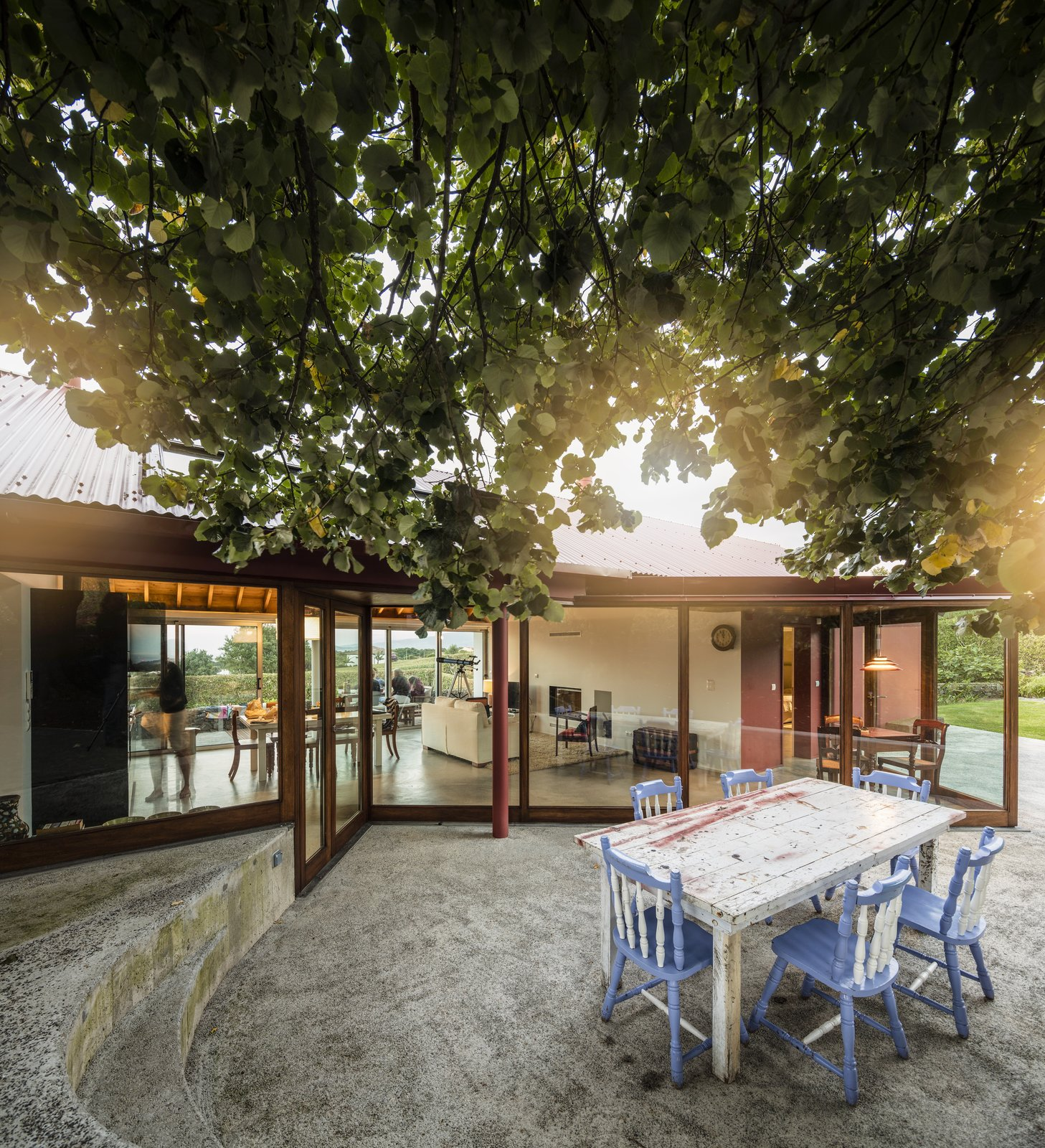 Outdoor, Front Yard, Concrete Patio, Porch, Deck, Trees, and Large Patio, Porch, Deck The tree seems to lean into the highly transparent living room, to become part of the space.  Photo 7 of 14 in A Bright Red Island Residence Embraces a Linden Tree