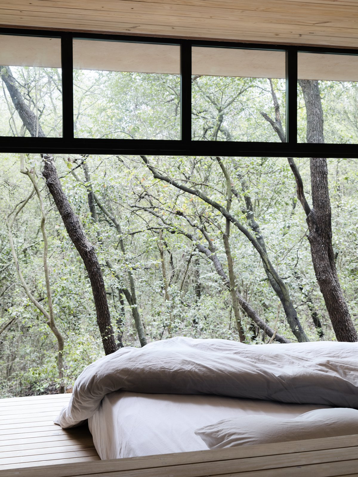 Bedroom, Bed, and Light Hardwood Floor One of the bedrooms that looks out to the tree tops.  Photo 13 of 16 in A Mirrored Mexican Home Hides Among a Lush Forest