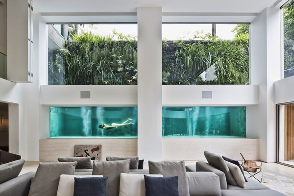 A Mesmerizing Pool Dominates This Brazilian Home