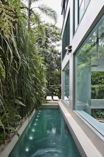 The narrow, elongated pool with a vertical green wall can be seen from inside the apartment.