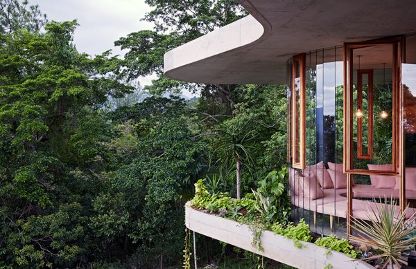 Robust, raw materials such as concrete, brick, and timber highlight the house's sculptural form, while the glass walls create a sense of full immersion in the rainforest.