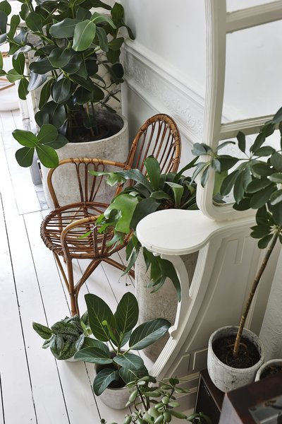 The various pots placed along walls and corners make the apartment feel almost garden-like.