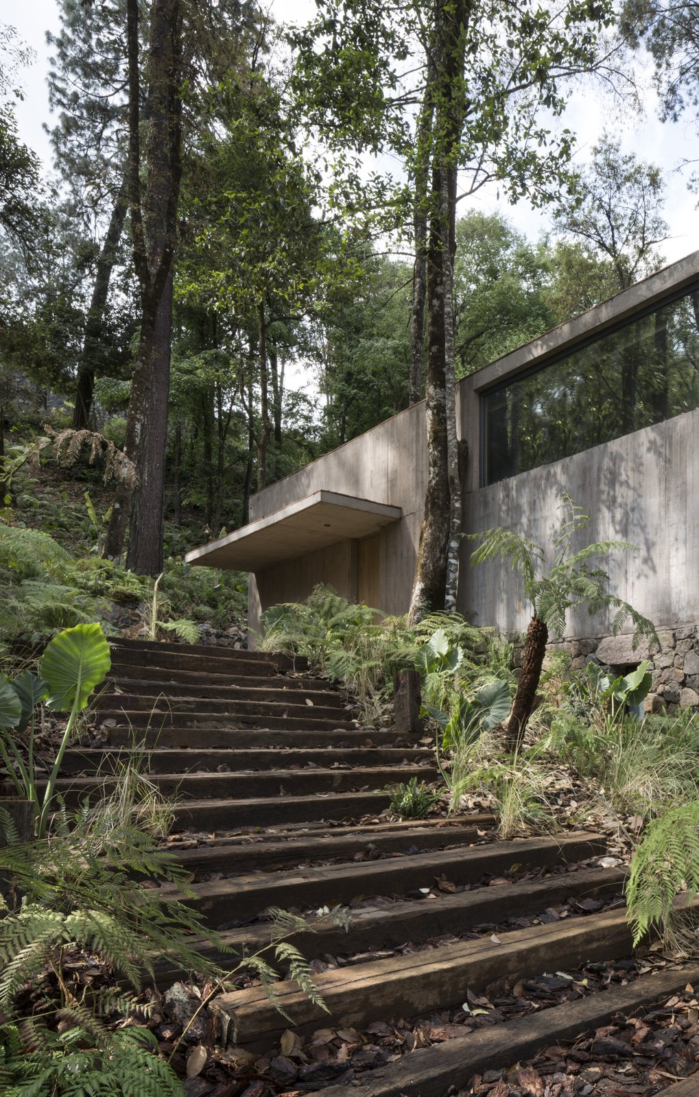 Staircase and Wood Tread A single roof connects the concrete volumes.     Best Photos from A Modern Home Embraces Nature With a Unique L-Shaped Design