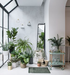 . 45 Modern Pots and Planters to Instantly Upgrade Your Greenery   Dwell