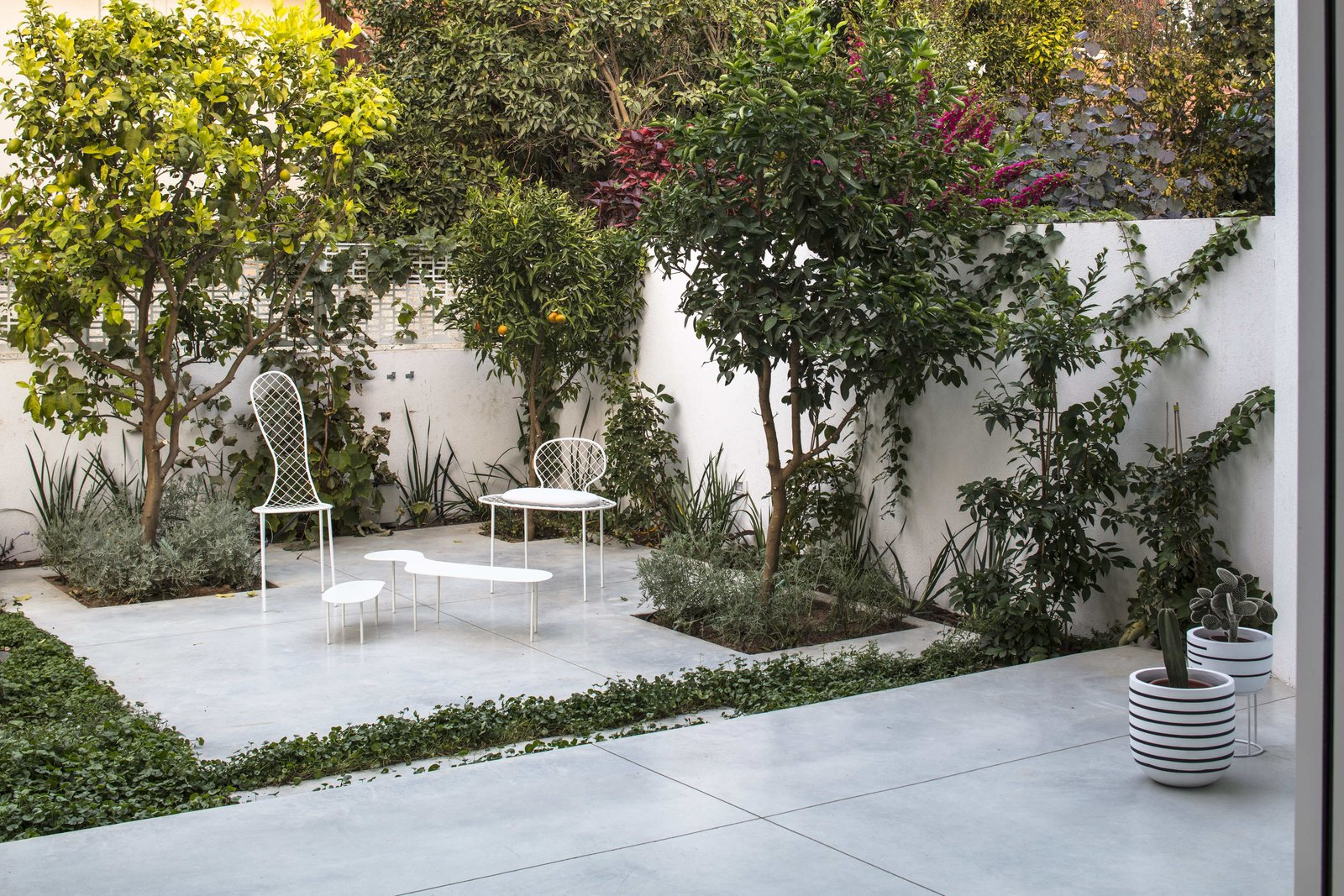 Outdoor, Grass, Shrubs, Large Patio, Porch, Deck, Back Yard, Trees, Vertical Fences, Wall, Gardens, and Garden A backyard garden.  Photo 14 of 19 in Sleek Concrete Cubes Form This Pavilion-Like Home in Israel