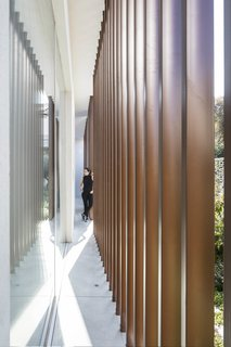 A vertical slit has been made in the main cube to create an inner patio. The slit brings in air and light, breaking up the mass of the cube and softening the sharp geometry of the design.