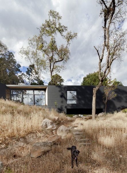 The walls of the volumes are slightly extended to create sheltered outdoor decks.