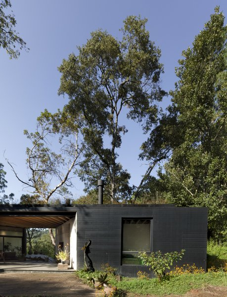 While the house was painted black to help it blend in with the landscape, the shrub-covered roof is the more prominent part of the overall design due to the verdant green surroundings.