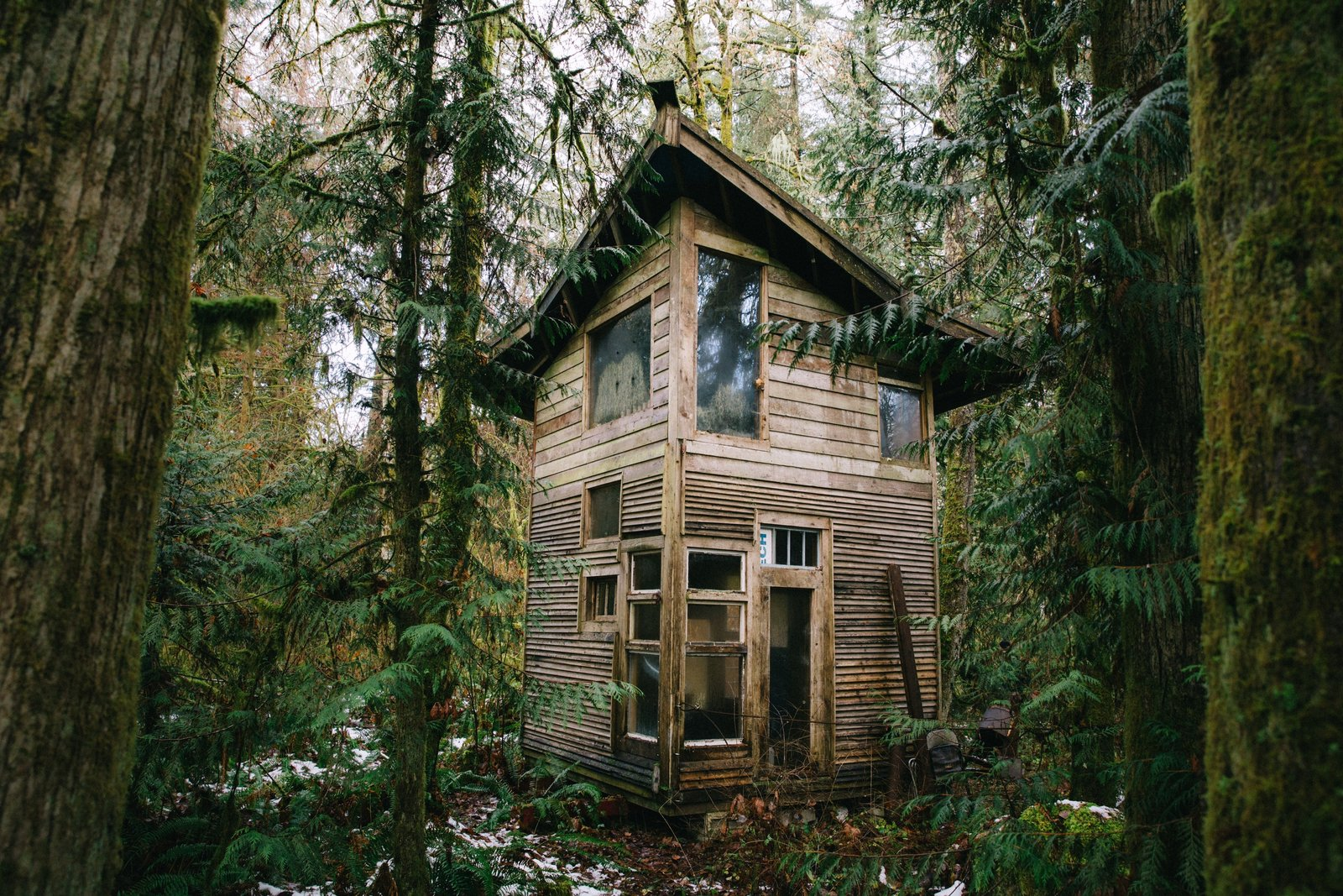The first cabin Jacob built.  Photo 10 of 21 in Jacob Witzling's Off-Grid Cabins Are Straight Out of a Fairy Tale