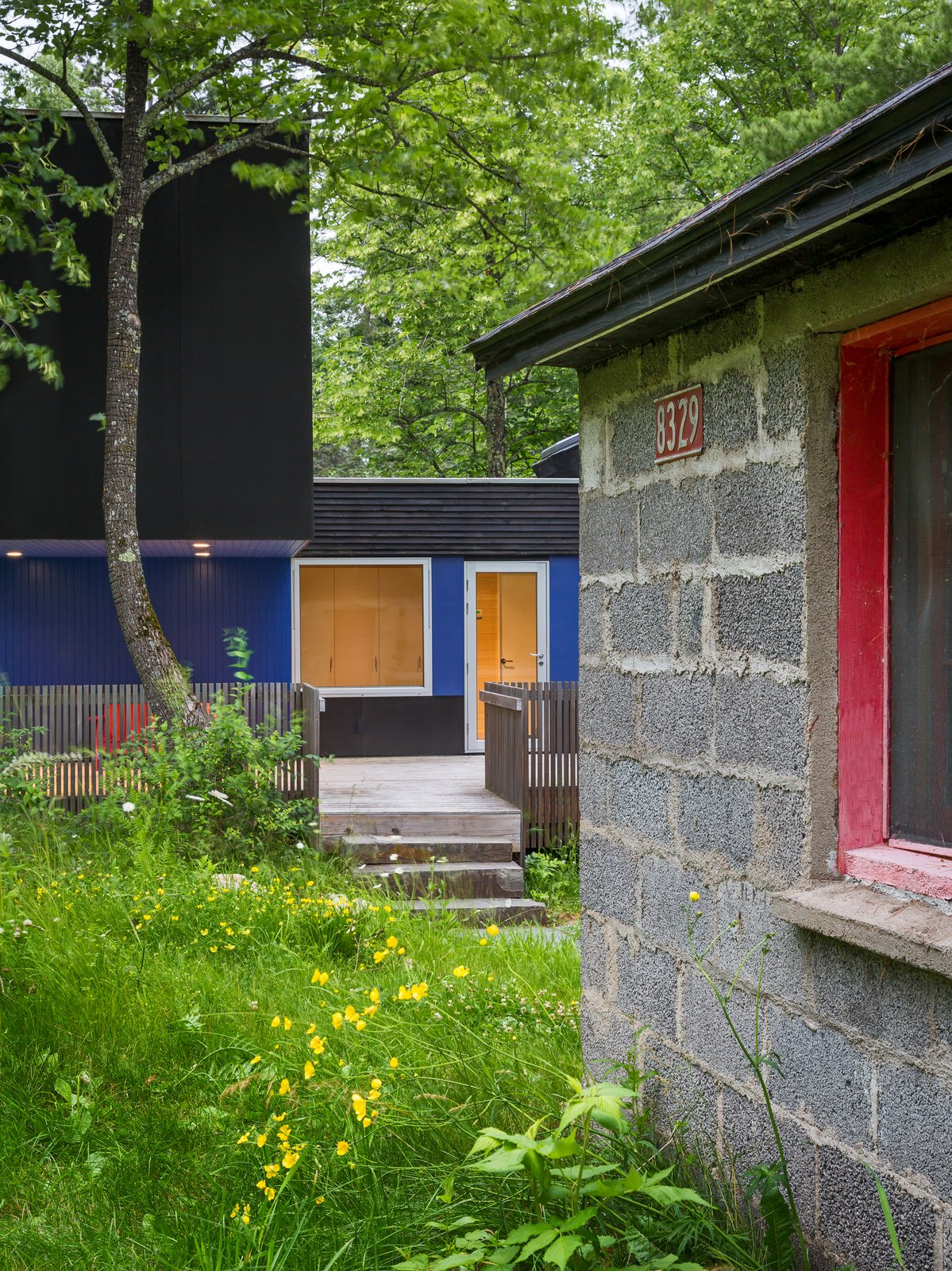 Outdoor, Vertical Fences, Wall, Shrubs, Grass, Side Yard, Wood Fences, Wall, Small Patio, Porch, Deck, Trees, and Large Patio, Porch, Deck Sections of the walls along the south-facing deck are painted bright blue to complement the sauna's pinkish-red door.  Best Photos from Two Rectangular Volumes Unite to Form a Colorful Lakeside Cabin