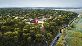 House 3000 is set within a maze-like sea of trees.