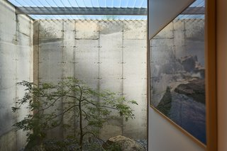 Inspired by Japanese pocket gardens, the gardens are flanked on three sides by concrete and one wall of full glass that lights sitting areas adjacent to the lower level bedrooms.