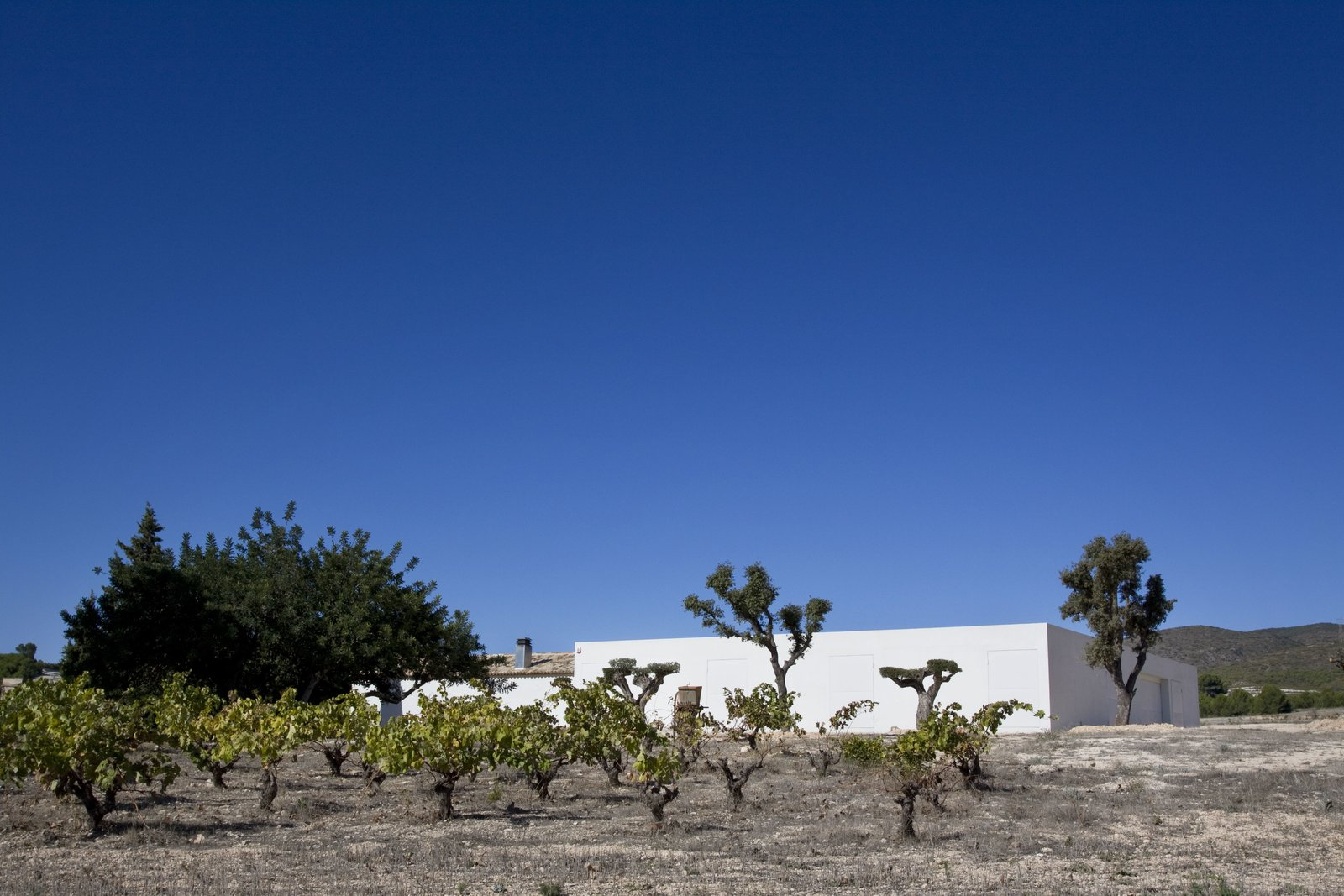 Exterior, Flat RoofLine, and House Building Type The architects achieved unity and continuity in the home's façade, despite the unevenness of the terrain.    Photo 2 of 11 in A Minimalist Mediterranean Home Rises in Rural Spain