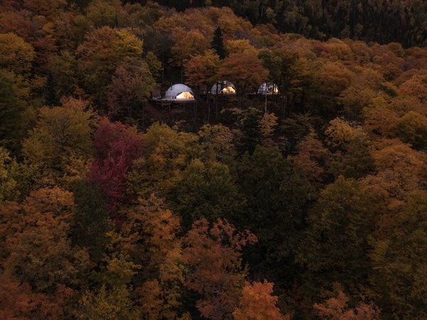 The three domes are nestled within a sea of trees.