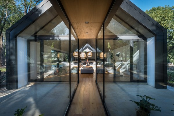 The wooden floors inside the house echo the trees outside.