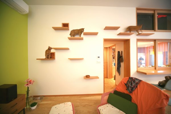 Shelf steps provide playful perches for kitties.