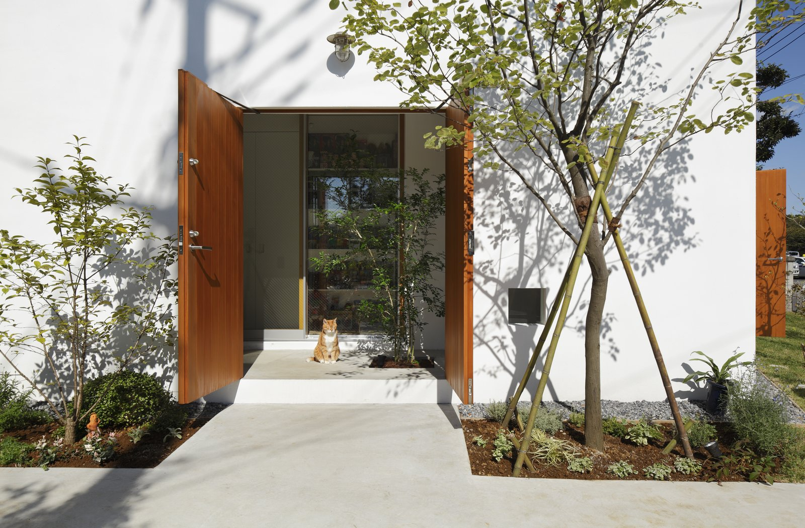 Doors, Exterior, Wood, and Swing Door Type The Inside Out residence has narrow, sheltered ledges along its perimeter where cats can nap in the sun.