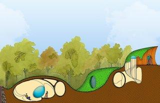 Organic house cross section diagram