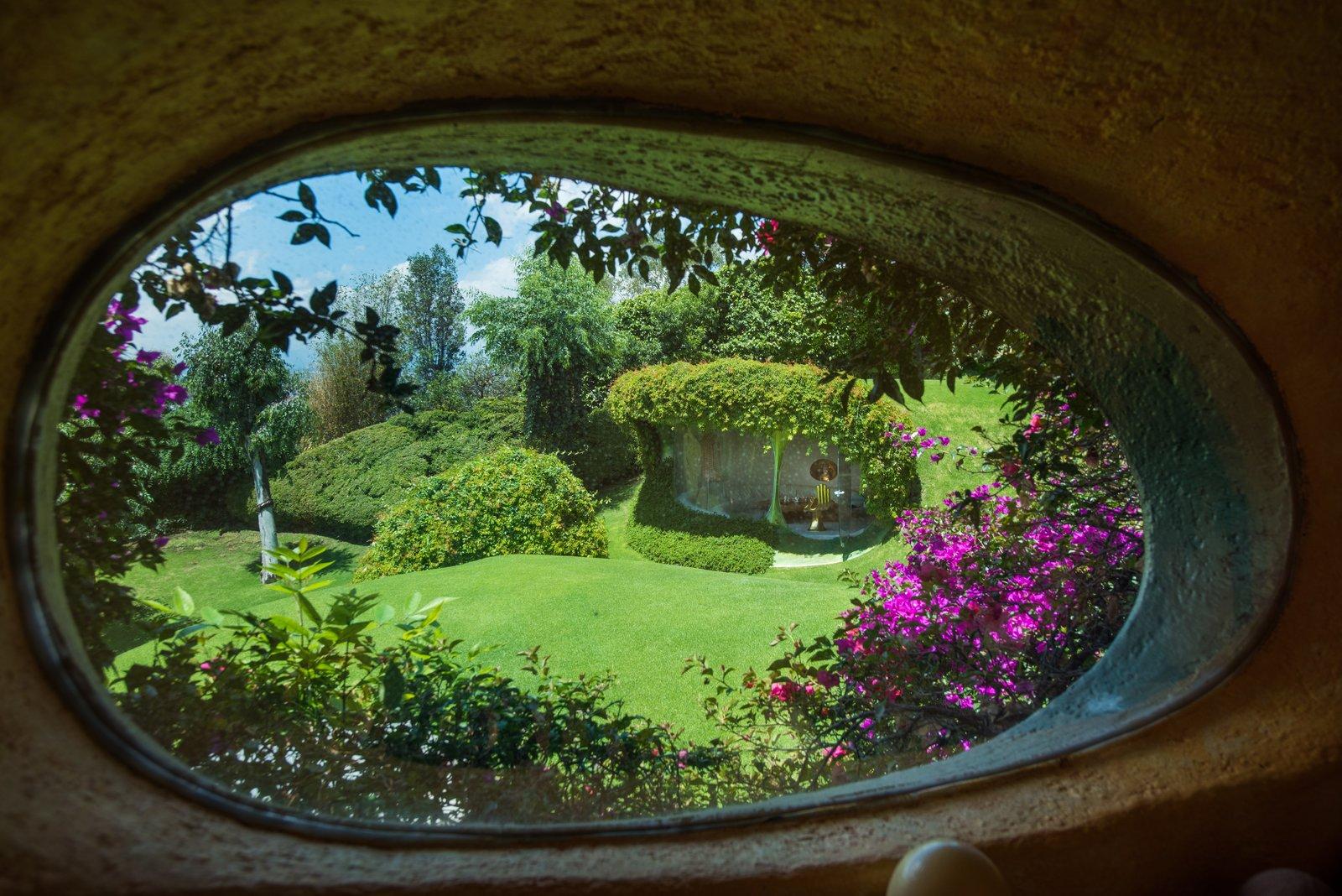 Organic House underground home window
