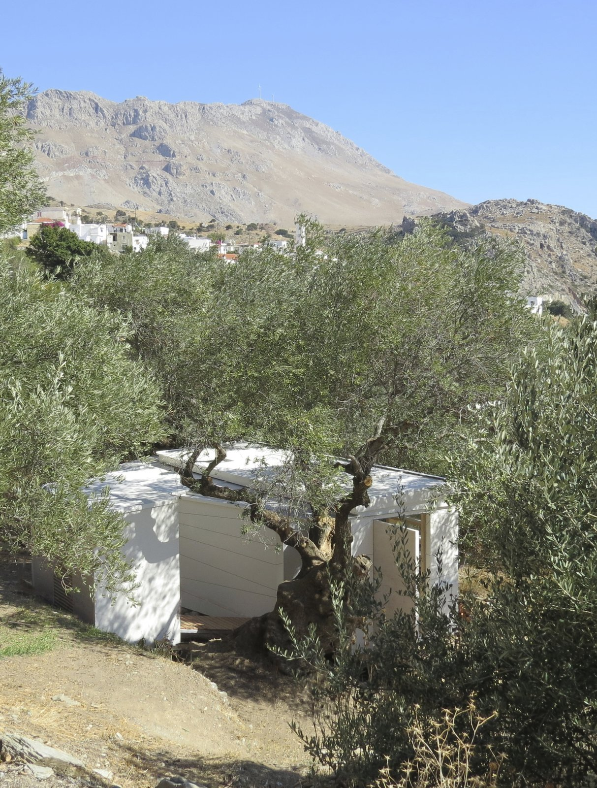 Exterior, Tiny Home Building Type, Flat RoofLine, and Wood Siding Material The exterior of the house is clad in white composite with an etched surface pattern.  Photo 2 of 10 in A Yoga Teacher's Tiny Home on Wheels Goes Off-Grid in Greece