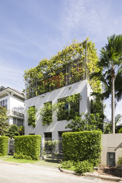 "Ivy plants wrap along the open grills on the top floor, and spill over from the windows of the first floor to create a vibrant green facade. The home is part of a larger project by VTN Architects called ""House for Trees."""
