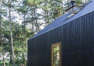 A sky-lit window brightens the sleeping loft.